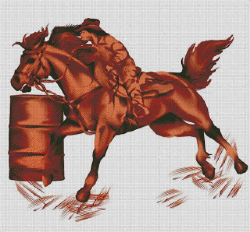 Cowgirl barrel racing quarter horse western rodeo counted