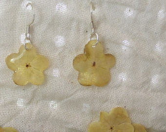 Viburnum Flower with fish hook earrings (very limited number)