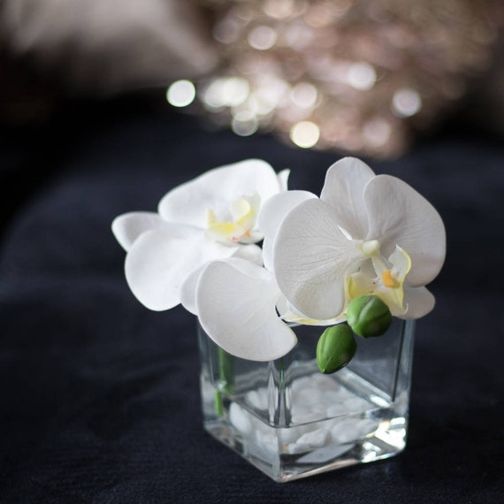 White Orchid Flower In Vase Luxury Hotel Spa Wellness Decor Etsy