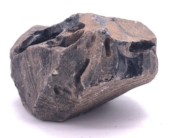 Cobble Creek: 1.15 LB Large Chunk of Obsidian Raw Rough Natural from Mexico