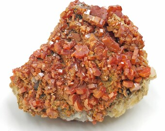 Cobble Creek: 71g Vanadinite on Baryte from Mibladen, Morocco - Natural - Beautiful - Raw