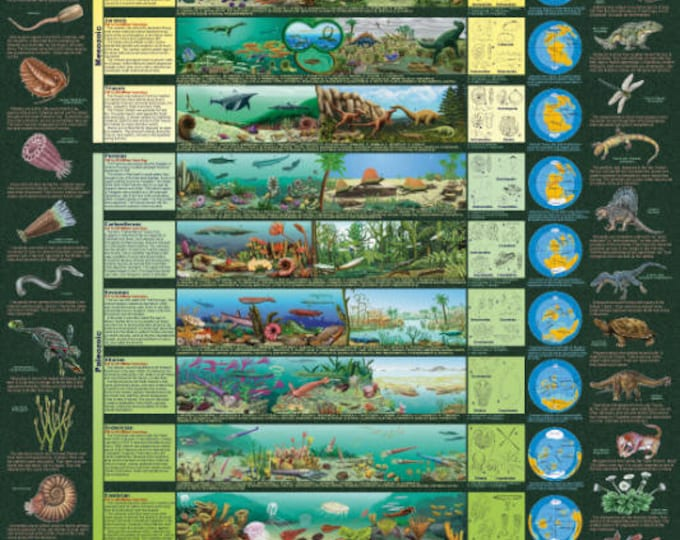 Eras of Life / Geological Time Scale