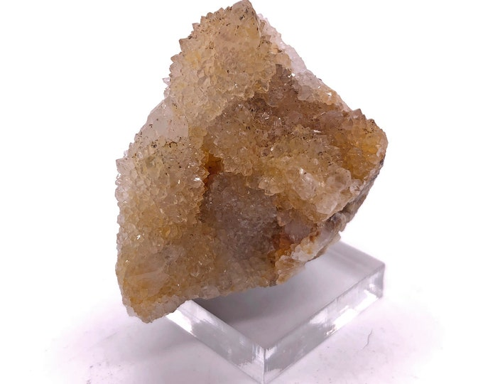 Cobble Creek: Small Beautiful Deep Citrine Spirit Cactus Quartz Cluster from South Africa - Natural - Druzy all over!