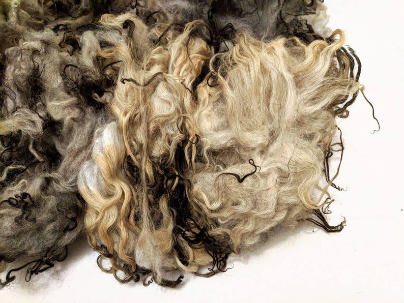 Raw Lamb Fleece Gray