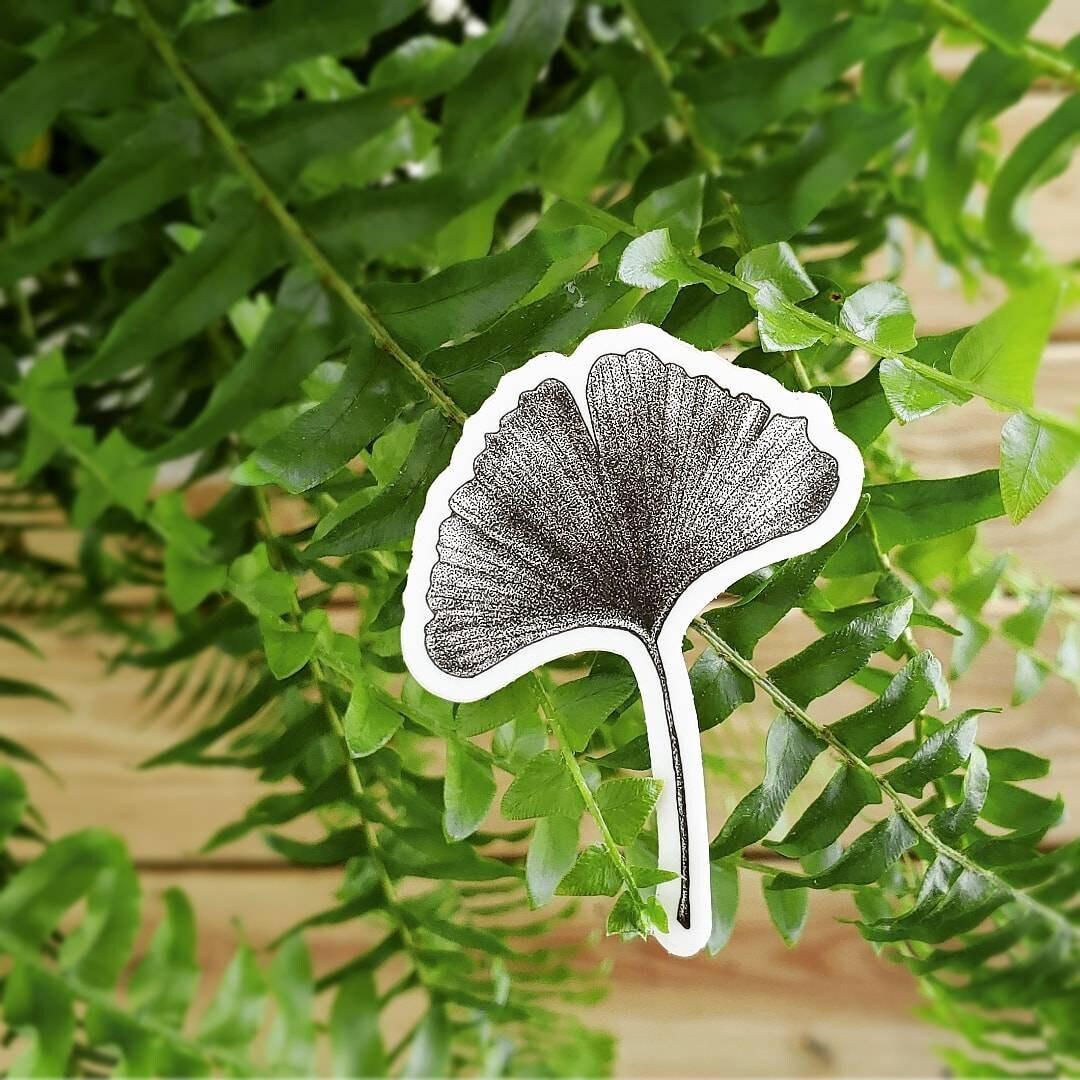 ginkgo sticker 3 vinyl botanical pointilism etsy