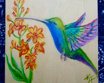 Original hand drawn Hummingbird in Colored Pencil on birch panel