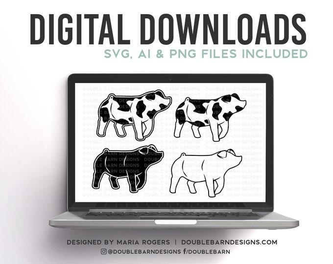 Spot Pig, Duroc Pig, Chester Pig, Down Eared Pig Designs | Bundle of Digital Downloads | SVG, PNG, Ai |Commercial License