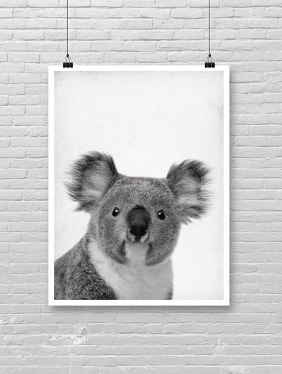 Koala Imprimee Bebe Koala Australie Art Noir Et Blanc Photographie Sepia Bebe Papier Photo Texture Koala Coucou Bebe Imprime