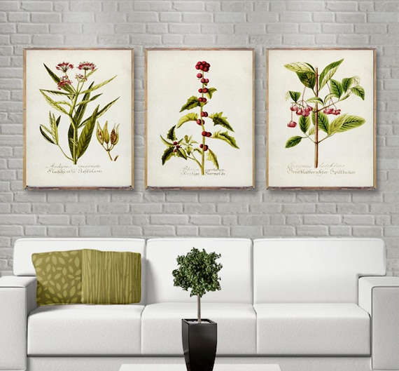 Botanical Flower Butterfly 3 A1,A2,A3 A4 Photo Print Art Poster Picture 47