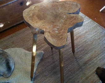 Figtree and cricket stumps side table