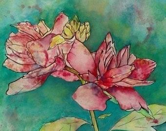Rose of Sharon, Original Watercolor