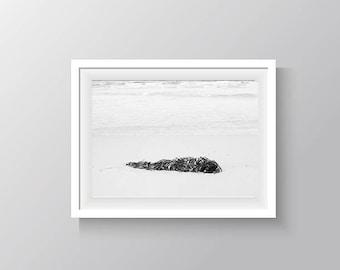 Seaside Photograph black and white fine art