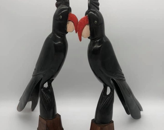 Pair of Antique Buffalo Horn Cockatoo's