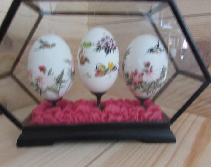 Vintage Japanese Folk Art Painted Eggs in Display Case