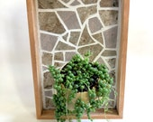 Framed Wall Mounted Planter - Yellow and Gray