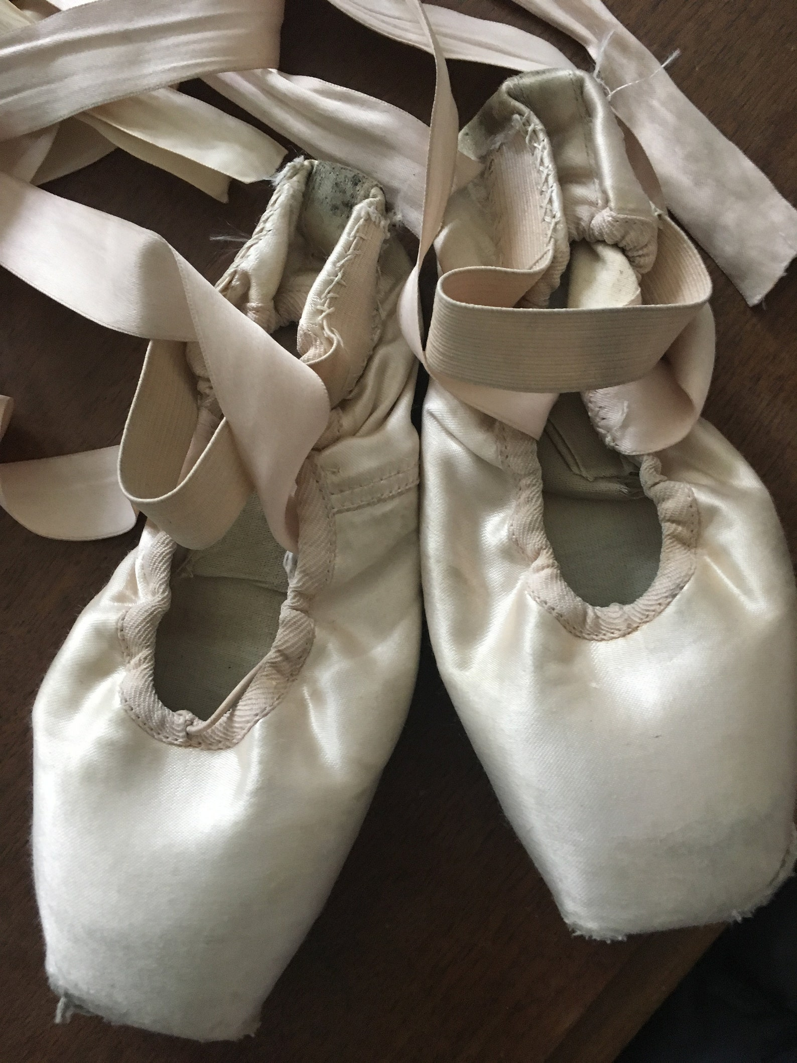 1 pair pointe shoes. used pointe shoes. dead pointe shoes. russian ballet shoes. romantic pink decor. shabby chic decor. fairyta