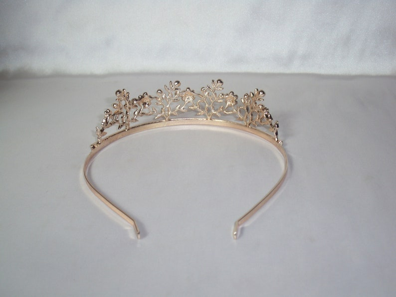 Wedding Crown Bridal Crown Rhinestone Tiara Pale Rose Gold Floral Tiara\uff0cBotanical Bridal Tiara Bridal Wedding Headpiece tiara crown
