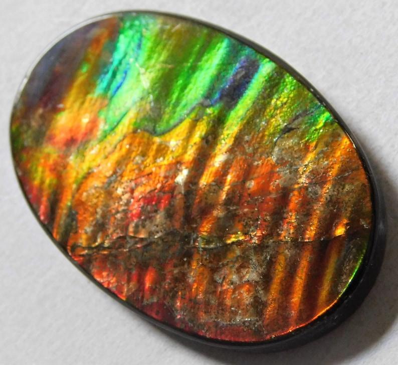 33.90 Cts Natural Polished Ammolite Cabochon Loose Gemstone 38X25X3.7 mm MM 08