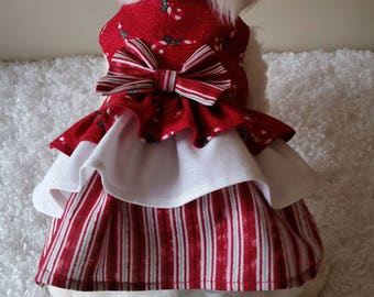 Candy Cane and Stripes Doggie Christmas Dress