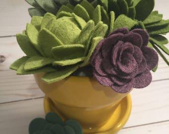 Felt Succulent Planter • Succulents • Felt Florals