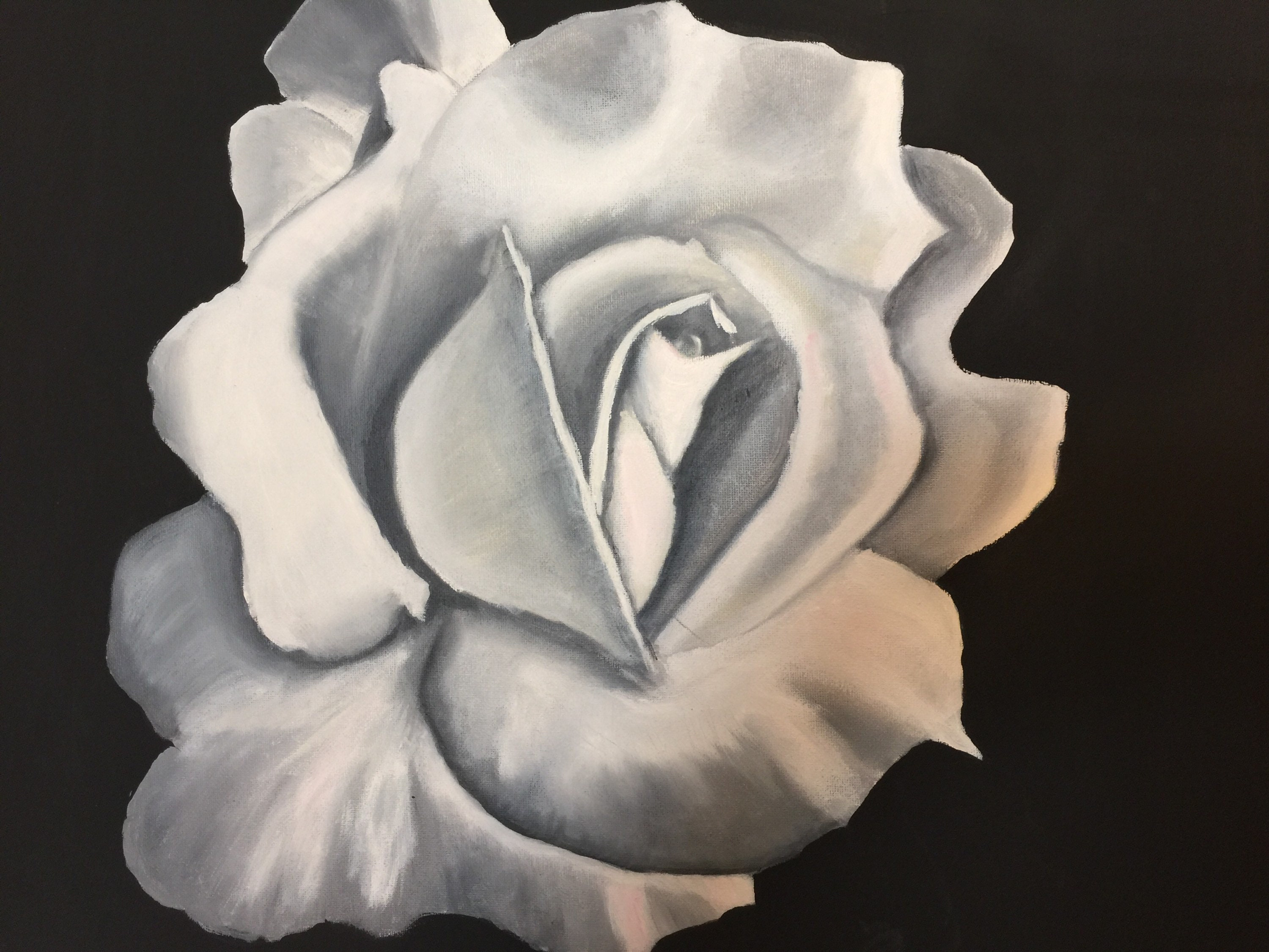 White Rose Oil Painting On Black Background Oil Painting On Etsy