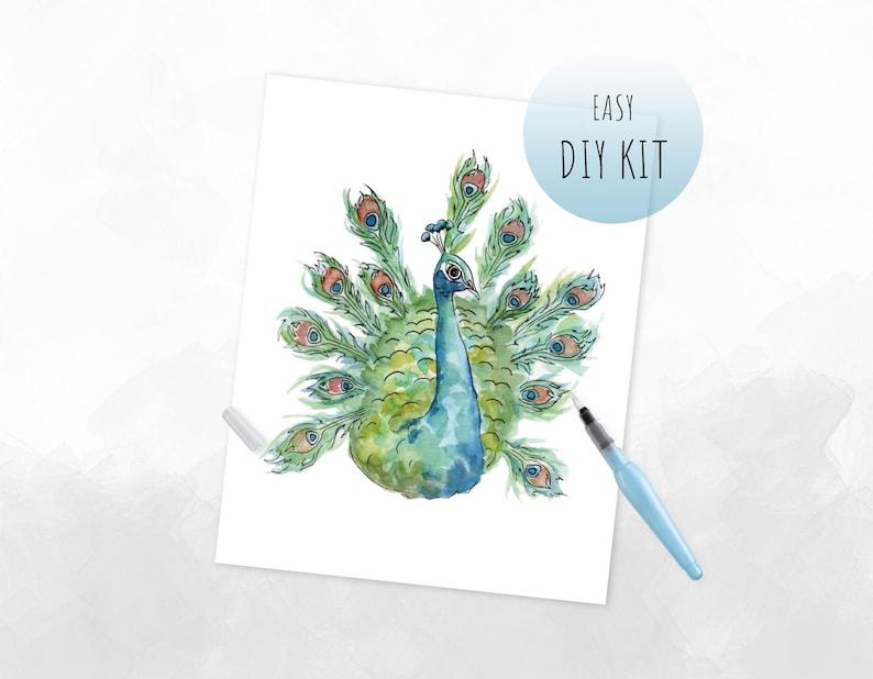 Diy Watercolor Kit Peacock