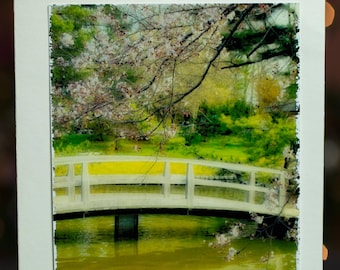 Japanese Gardens in the Spring Photo Greeting Card