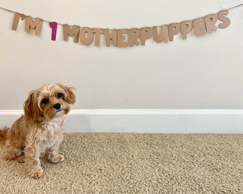 Motherpuppers birthday banner Custom dog birthday banner-puppy birthday party-dog party decor-Birthday banner for dog-dog/'s first birthday