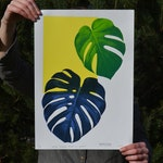 A3 Minimalist Blue, Green and Yellow Swiss Cheese Plant Screen Print. Hand made and Original