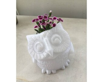 Small Smiling Owl Planter, Plant Pot, Planter, Succulent Planter, Cute Planter, Animal Planter,  Indoor Planter, Fun Planter, Desk Planter