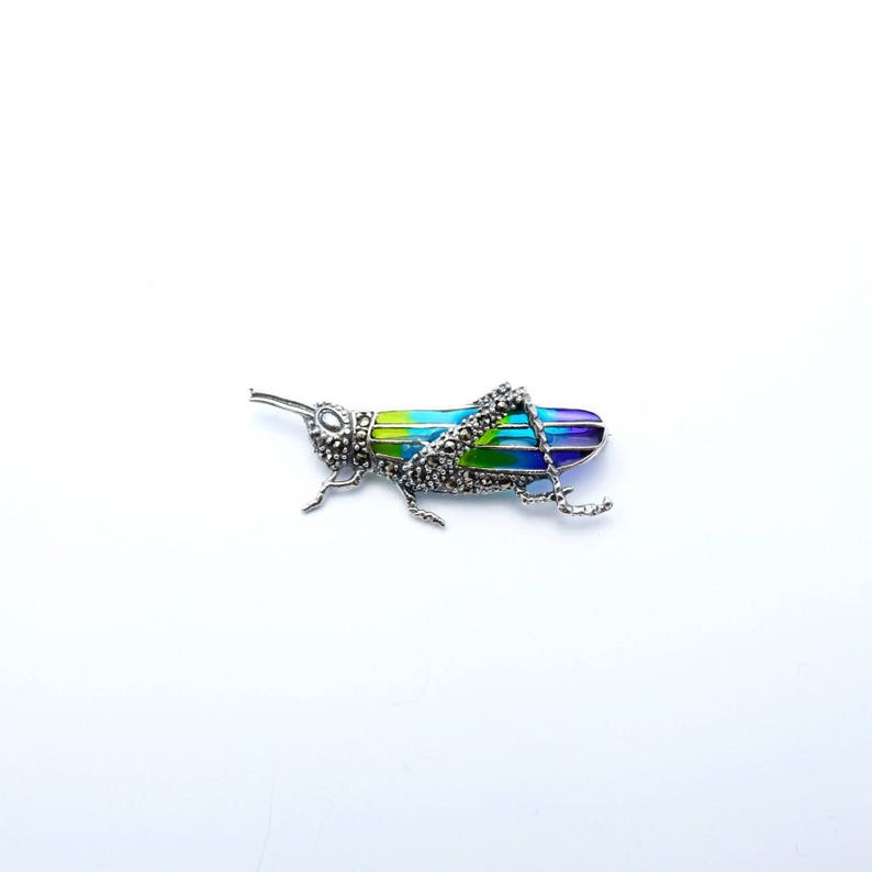 handmade jewelry sterling silver 925 handcrafted enamel Grassshopper enamel brooch pin