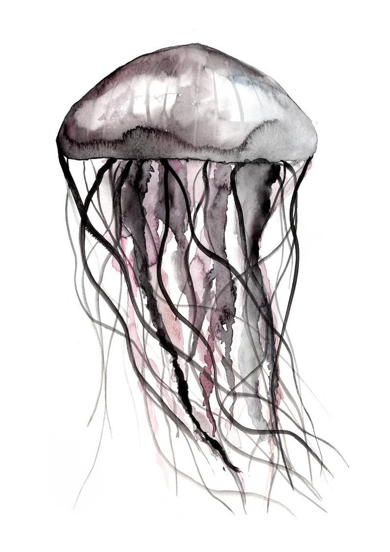 qualle farbig din a3  a4 wasserfarbe aquarell jellyfish