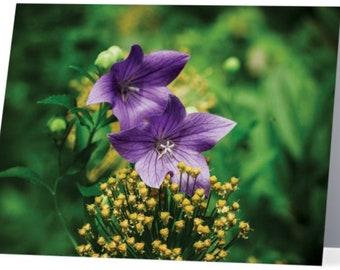 Blank Notecards Set of 5 - Flowers