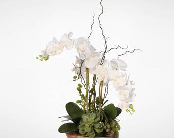 Real Touch Phalaenopsis Silk Orchid with Succulents in Natural Teak Wood Bowl #40C