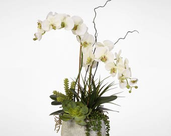 Real Touch Phalaenopsis Silk Orchid Arrangement with Succulents in a Cement Pot #25B
