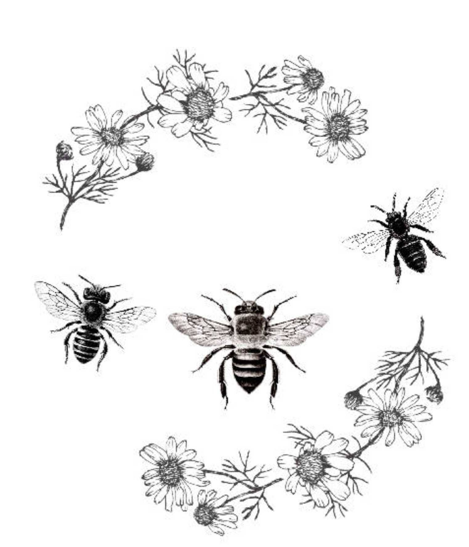 Bee Print Bee Clipart Vintage Bee Poster Vintage Daisy Flowers Etsy