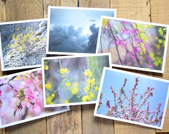 Set of 6 - Spring Photo Card Set - Blooming Spring Photography cards - 5x7 Greeting Cards - A7 Size - Peach Bloom Art - Pretty Greeting Card