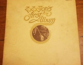Vinyl: ZZTop's First Album, Sleeve and Record Free Shipping
