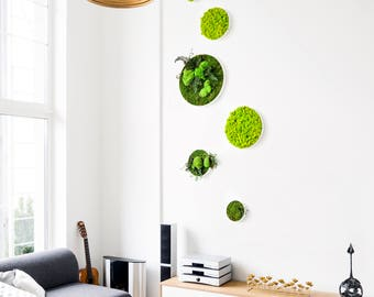 Preserved Scandinavian moss circle picture  ~ Moss Wall Art ~  Green Wall Picture ~ Moss Wall Decor ~ Green Design