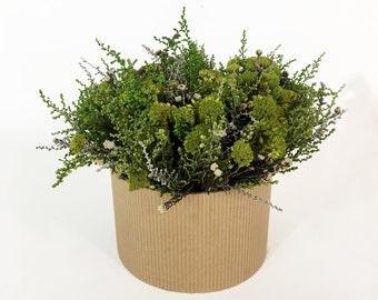 Preserved greenery bouquet Floral arrangement centerpiece Botanical home decor Indoor plant in the pot