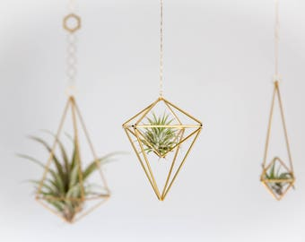 Geometric Modern Industrial Himmeli Kite Air Plant Holder