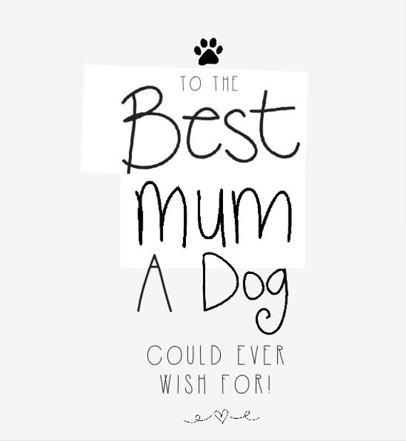 To the best mum a dog could ever wish for Mother's Day Greeting Card