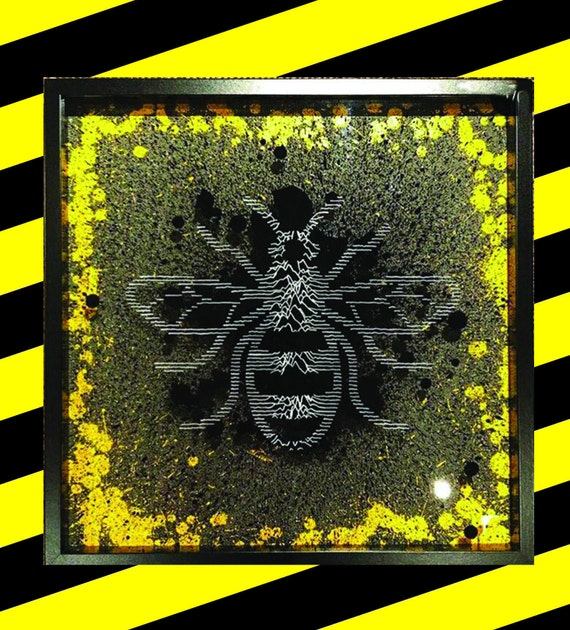 Manchester Bee inspired by Joy Division's 'Unknown Pleasures' album