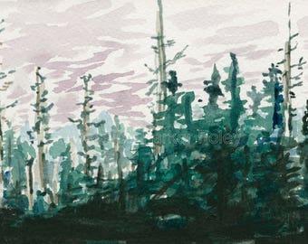 Watercolor Giclée Print - Black Spruce Swamp Sunset Vermont