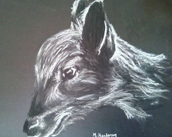 Baby Deer Fawn Chalks & Charcoal Drawing Original Framed