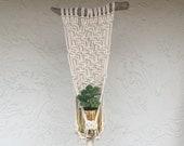 Hanging Planter Indoor, Macrame Plant Hanger, Macrame Wall Hanging, Plant Display, Plant Lovers, Personalized Gift