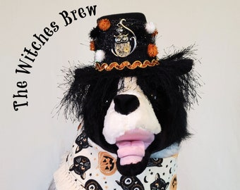The Witches Brew, Halloween Bandanas, pet costume, Halloween for pets, dog hat, pumpkins, Witch, Black Cat, Owl, Halloween for dogs,