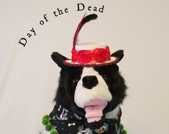 Day of the Dead, pet costume, Halloween Bandanas, hats for dogs and cats,  Halloween for dogs