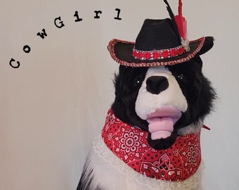 Cowgirl, pet costume, Halloween Bandanas, Halloween Hat, dog and cat hats, hat for dogs, Halloween for dogs, cowboy hat