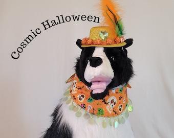 Cosmic Halloween, pet costume, Halloween Bandanas, Halloween for pets, dog hat, hat for dogs, Halloween for dogs